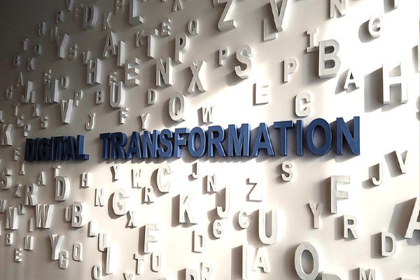 Adjusting Your Business for a Digital Transformation